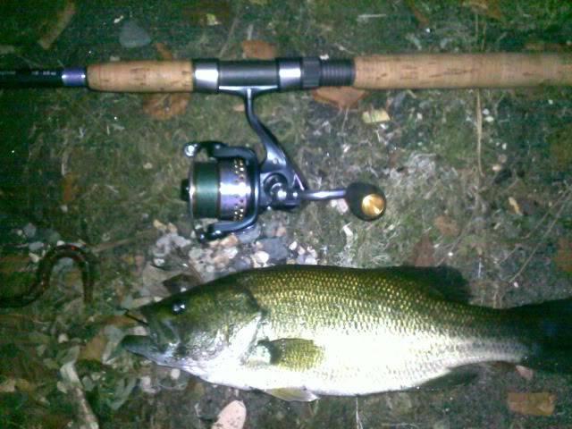Bass di Ferragosto 15082011105