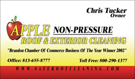 Electric air compressor Cleaningrooftampa