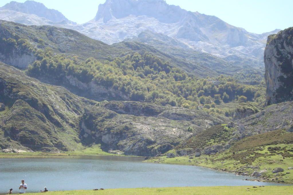 Vacaciones en Cantabria..fotos.. - Página 3 DSC00833