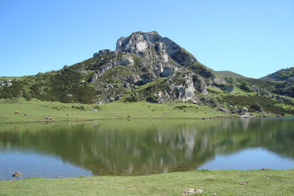 Vacaciones en Cantabria..fotos.. - Página 3 DSC00839
