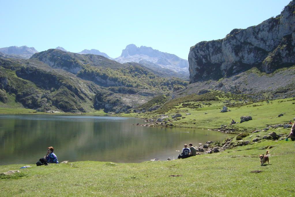 Vacaciones en Cantabria..fotos.. - Página 3 DSC00841