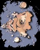 Nico se présente Avatarmonchri2