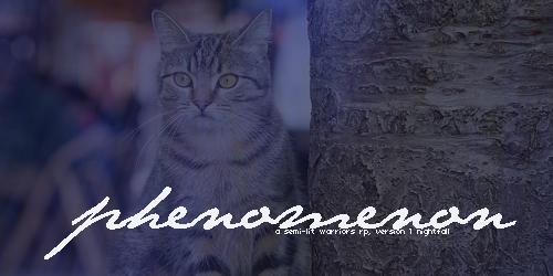 PHENOMENON -- A Warrior's RP Phenomenon2