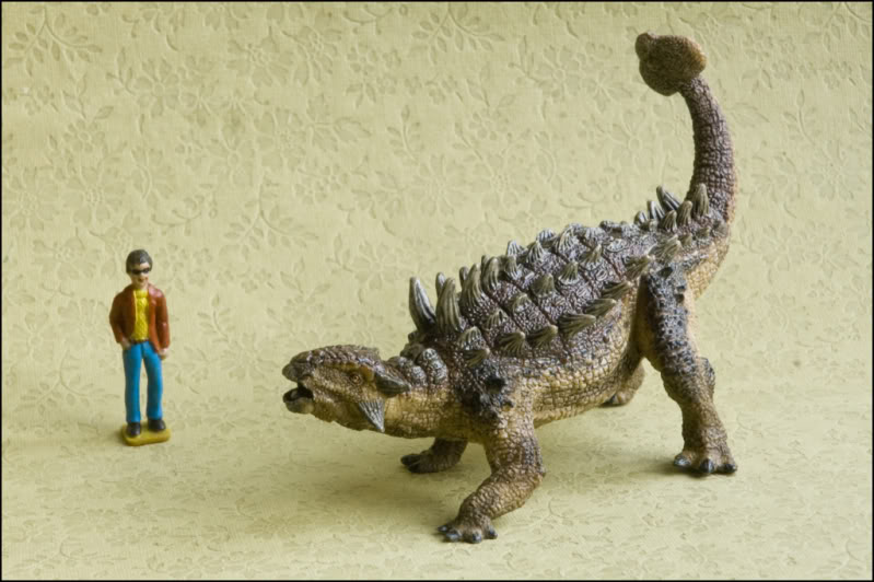PAPO Styracosaurus and Euplocephalus PAPOEuoplocephalus800
