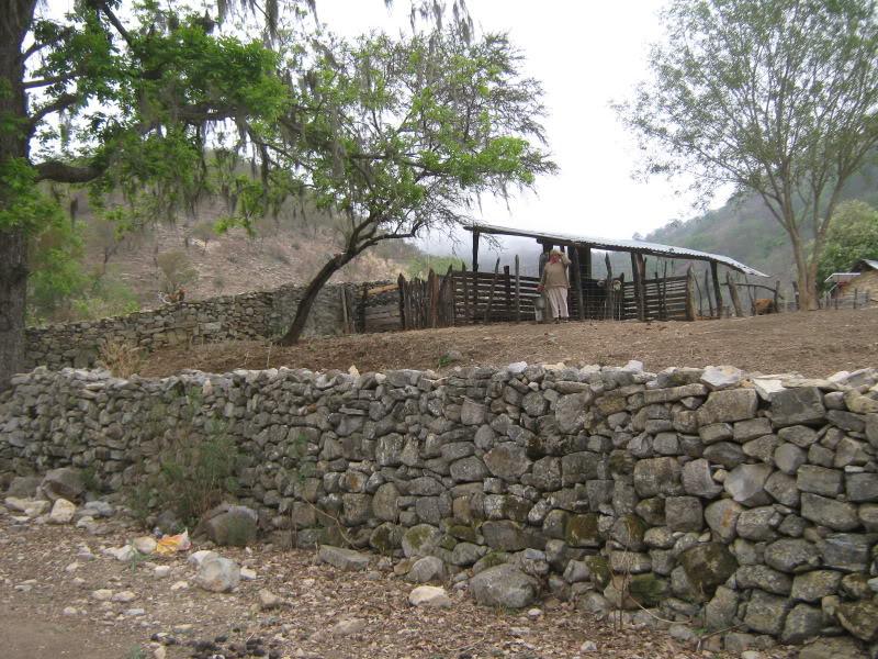 Consulta construcci n de un muro de piedras - Piedras para construccion ...