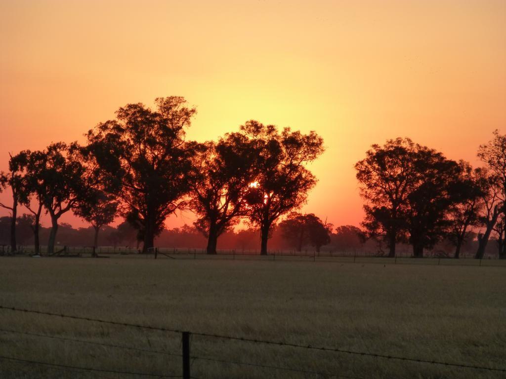 Evening walk at sunset Eveningwalkatsunset019_zps2e19c2c6