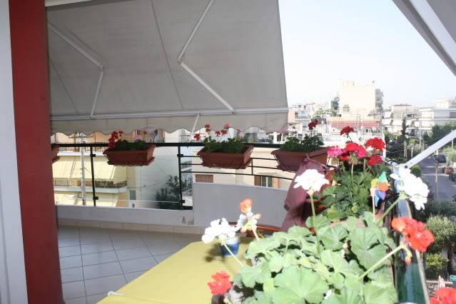 Florile din apartament 1600