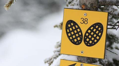 France Montagnes : du sport pour les chanceux qui partent en vacances d'hiver Adobestock_7210509-91c995de90c5c23e
