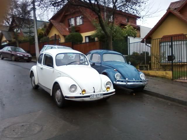 les presento mis VWs... SPM_A0225