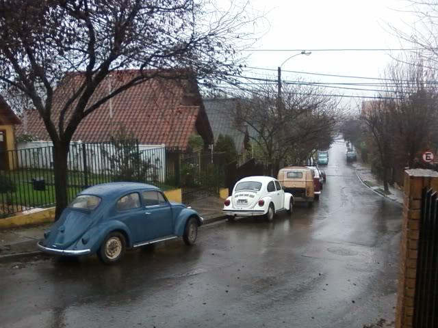 les presento mis VWs... SPM_A0231