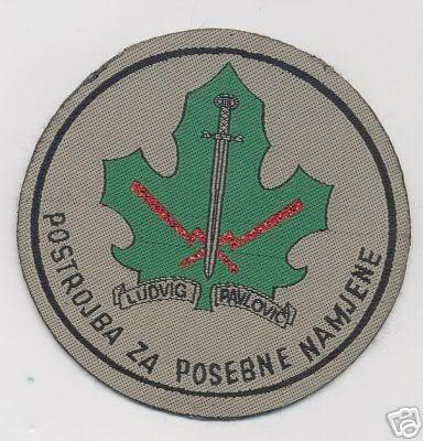 insignes Croate H.V et H.V.O 1991/1995 D1_1_b1