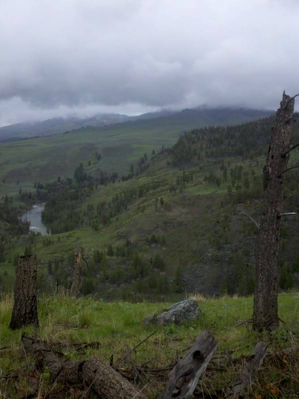 Road trip report: Yellowstone 2013-05-29_13-10-22_108_zps80fdd326