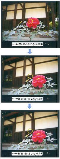 hướng dẫn chụp ảnh căn bản chi tiết 0209