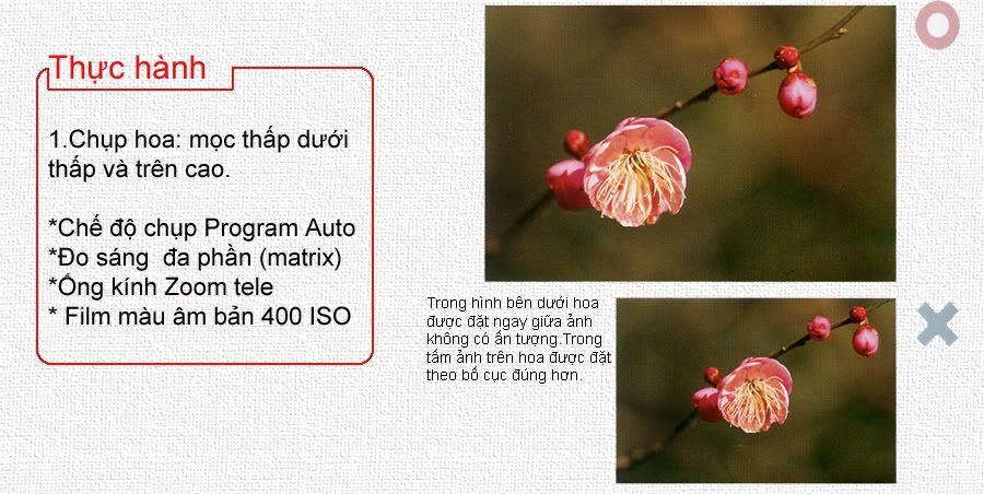 hướng dẫn chụp ảnh căn bản chi tiết 0404-2