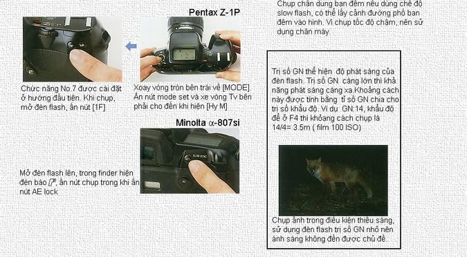 hướng dẫn chụp ảnh căn bản chi tiết 0504-2