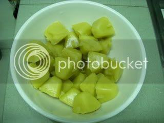 Yoghurt Sherbet DSCN0755