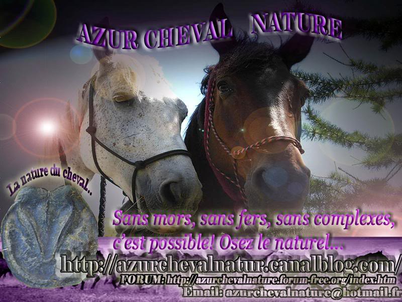 Le Blog Azur Cheval Nature