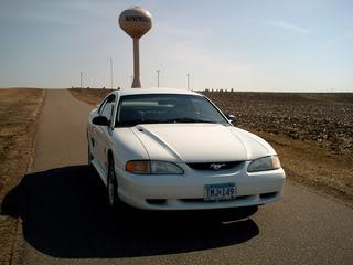 98 stang pics Mustang4-15-08010
