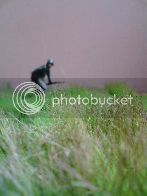 TREEMENDUS Raw Grass Rawgrassdio020