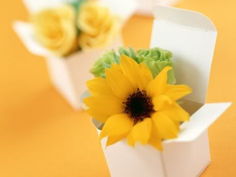 FLOWERS DECORATION Boxed-Sunflower-1600x1200-2