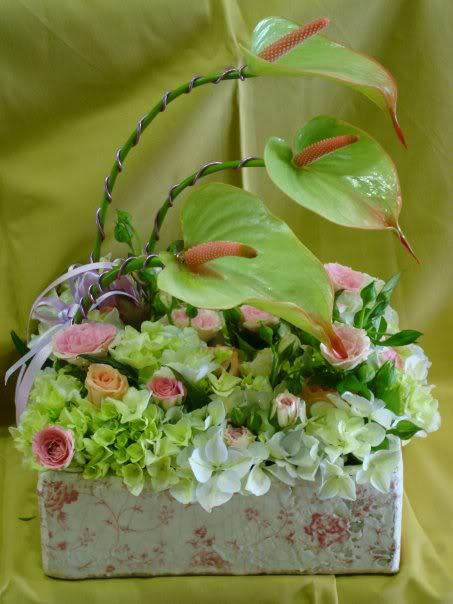 Cvetna oaza - Page 2 240a88e0