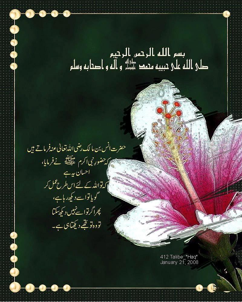 Hadith of The Day (Daily update) - Page 3 Hadees11