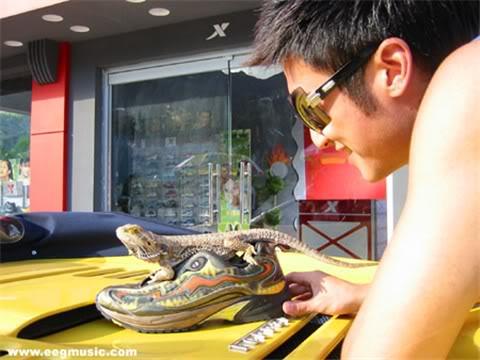 Đình Phong và thú nuôi | Nic & pets 000122709