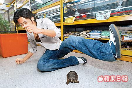 Đình Phong và thú nuôi | Nic & pets 0ae7df38077586efb311c774