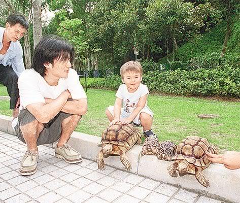 Đình Phong và thú nuôi | Nic & pets 318b4710ef08f1d8c3ce795a