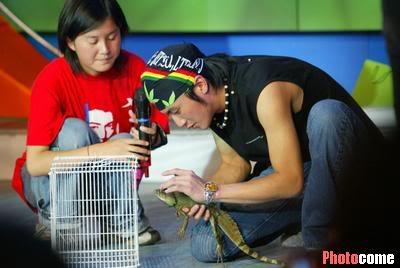 Đình Phong và thú nuôi | Nic & pets Iguana2