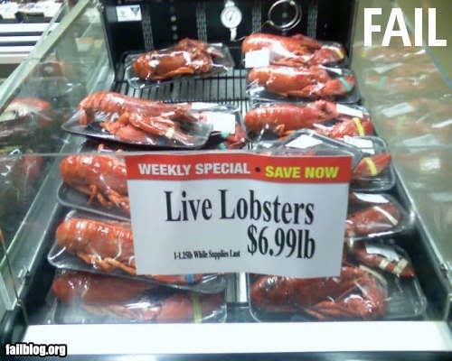 """Epic Fail "" picture thread Fail-owned-live-lobster-sign-fail"