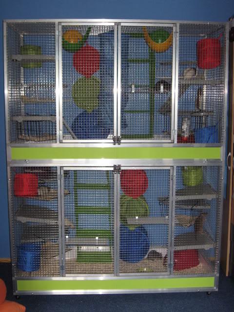 Conseils pour une cage faite maison en aluminium Ratten013