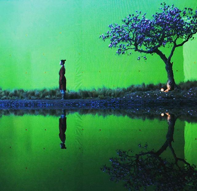 Disney's Mulan Filming Promo 42279015820_95a42e90e9_z_zpsd2lvhqyn