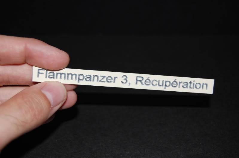 Flampanzer III (Dragon, 1/35) - Page 2 DSC_0002-1