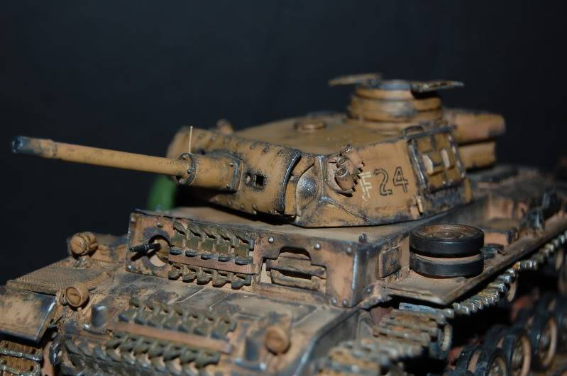 Flampanzer III (Dragon, 1/35) - Page 2 DSC_0010