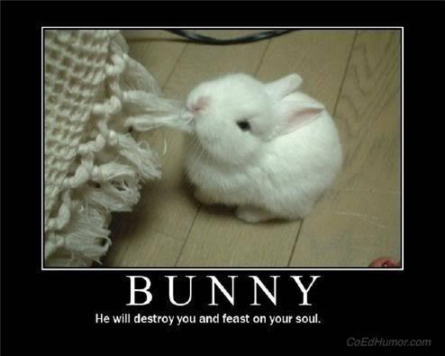 Guild Mascot Bunny