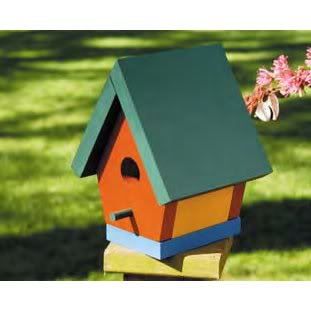 Happy 34th Tasha (Open to party goers from the other party) - Page 3 Birdhouse_DM_46003