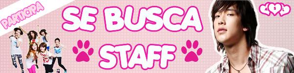 ¿Te gustaría ser miembro del Staff? SESTAFF