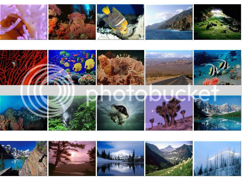 Nature Wallpapers - Mega Thread Wallpapers1556-1575