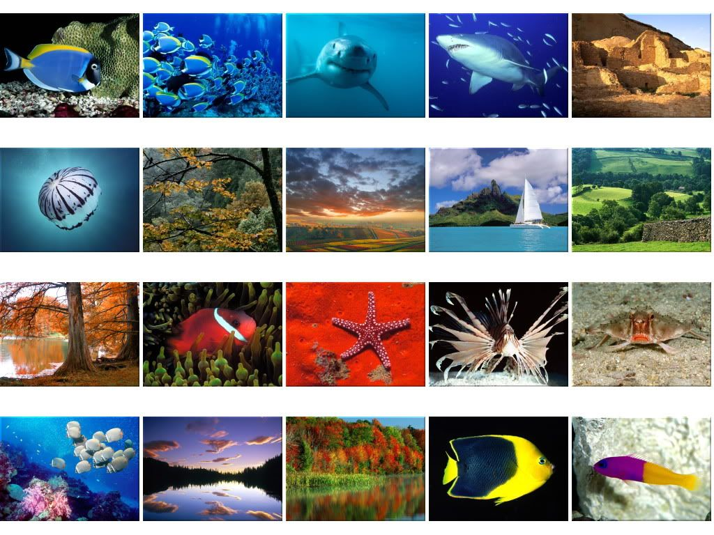 Nature Wallpapers - Mega Thread Wallpapers1596-1615