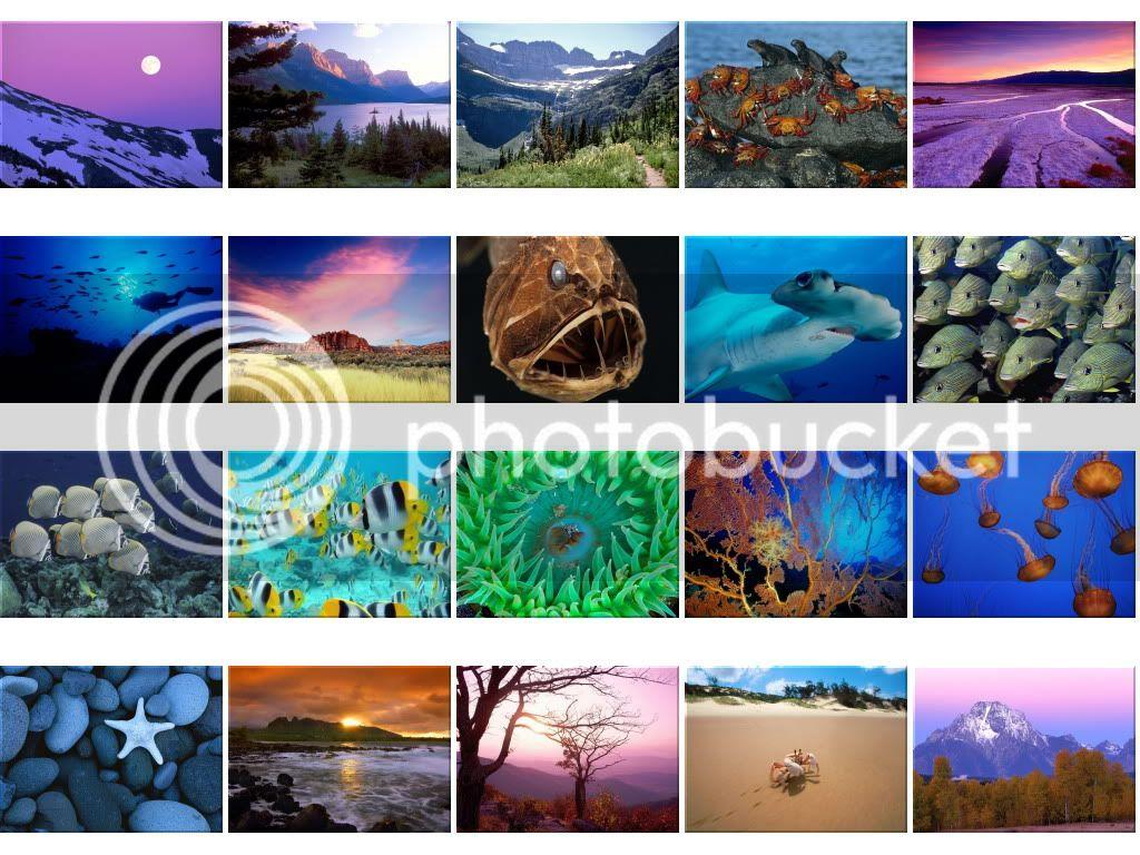 Nature Wallpapers - Mega Thread Wallpapers1616-1635