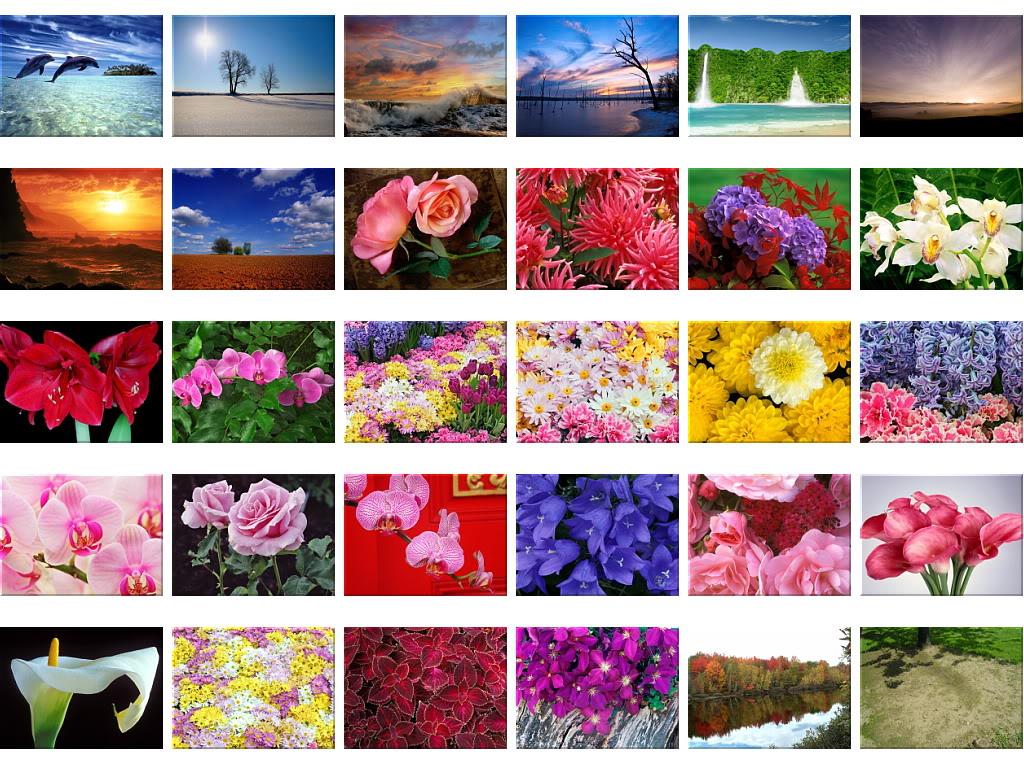 Nature Wallpapers - Mega Thread Wallpapers1726-1755