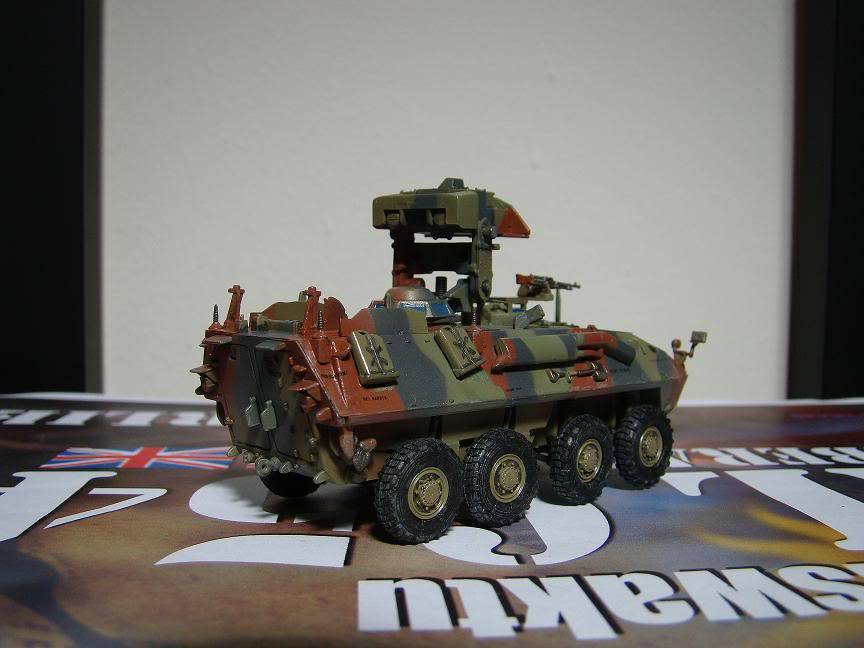 Military Model (Kits and Diecast) - Page 5 DSC02487
