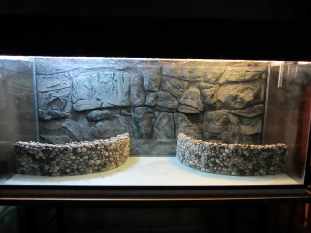 Fondo rocoso 3D (Por fuera del acuario) IMG_0099