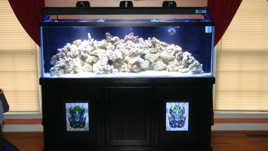 180 gallon Reef build. 008-10180