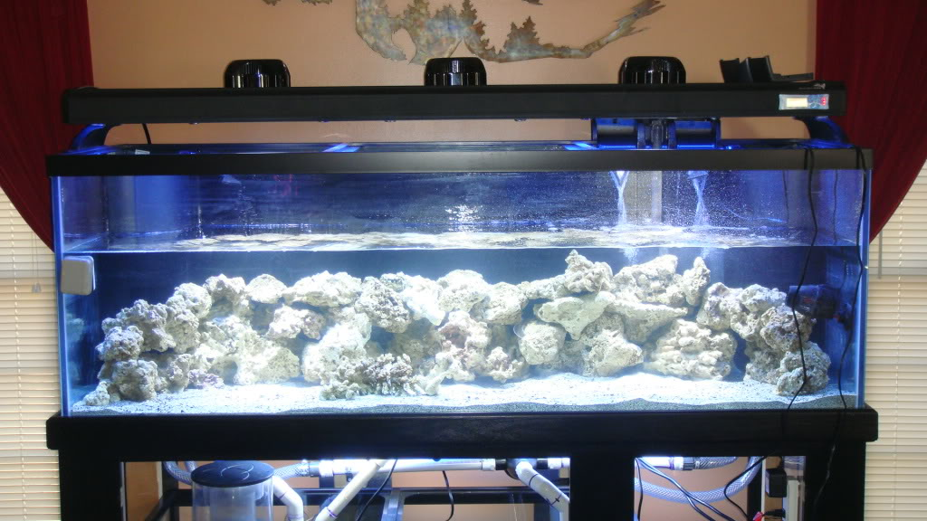 180 gallon Reef build. 025-10180