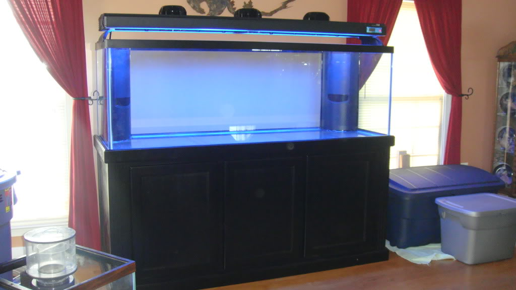 180 gallon Reef build. - Page 3 030-3180