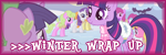 Organizador del Winter Wrap Up