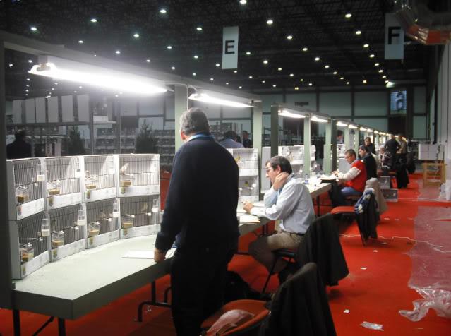 Diário do 58º Campeonato Mundial de Ornitologia Matosinhos 2010 3