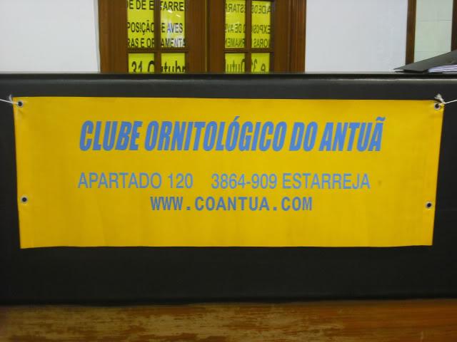 Fotos 17ªExpoave Clube Ornitológico do Antuã COA099